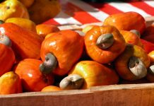 Cashew Juice Health Benefits